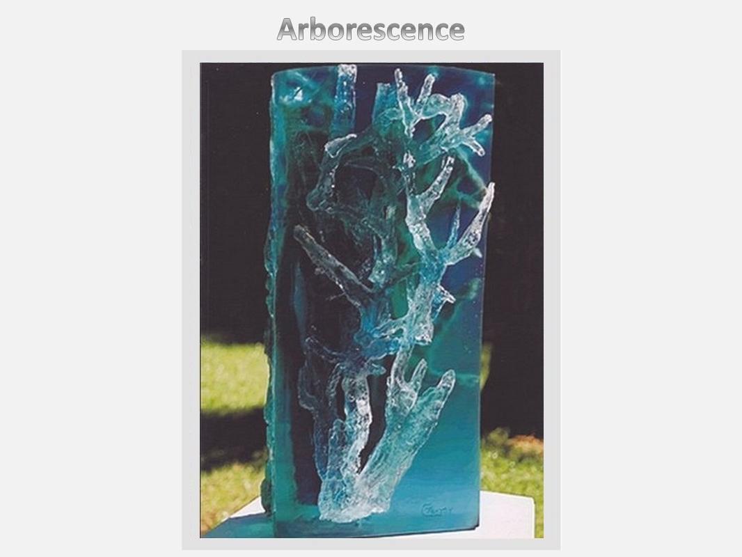 Notre ancêtre,  l'algue bleue.